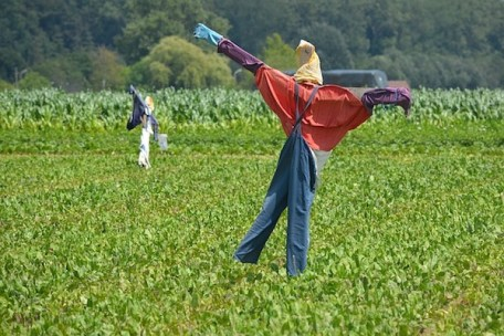 GMAT practice questions are like scarecrows. To get the job done, they should be as realistic as possible.