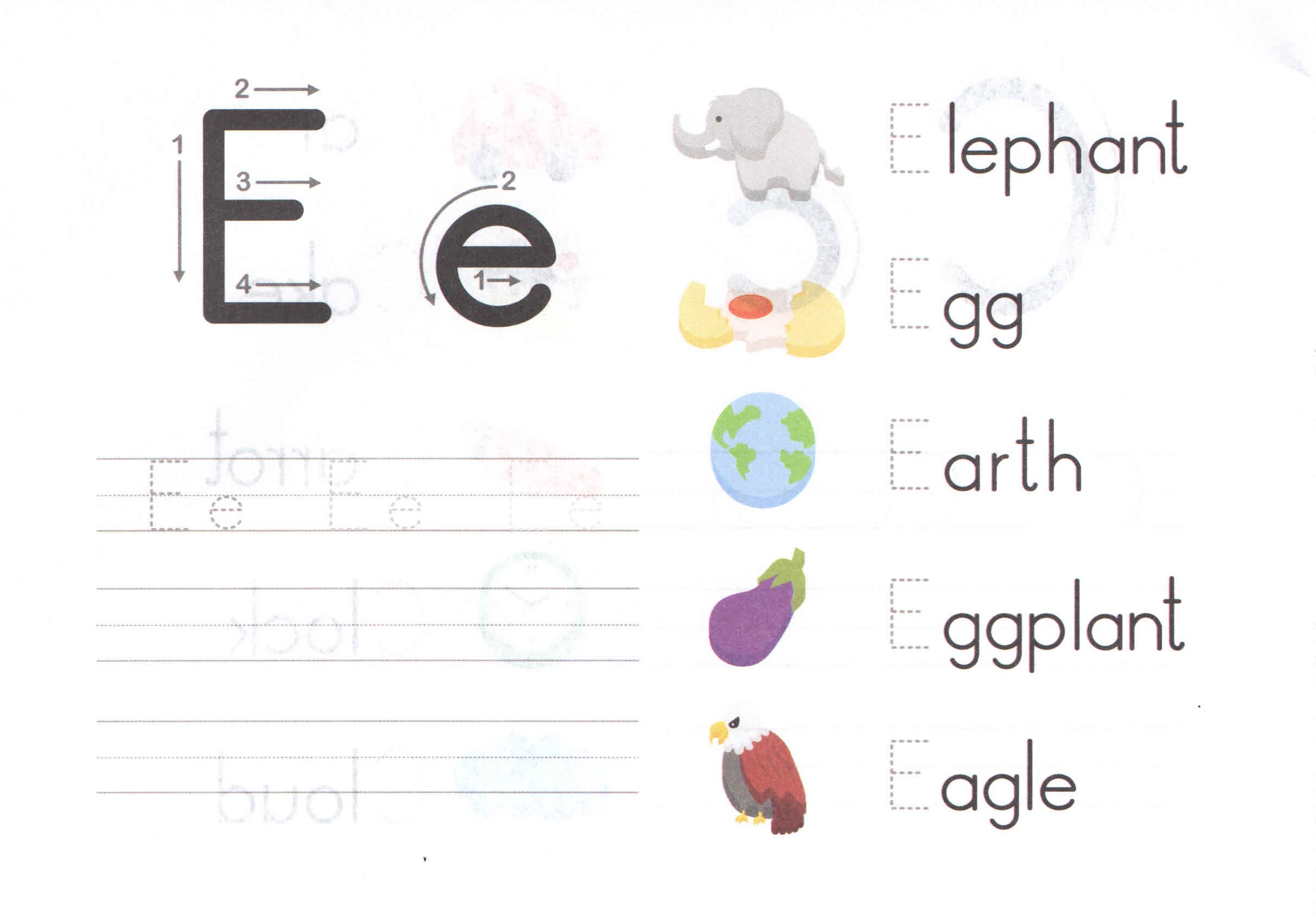 Alphabet Capital And Small Letter E E Worksheet For Kids