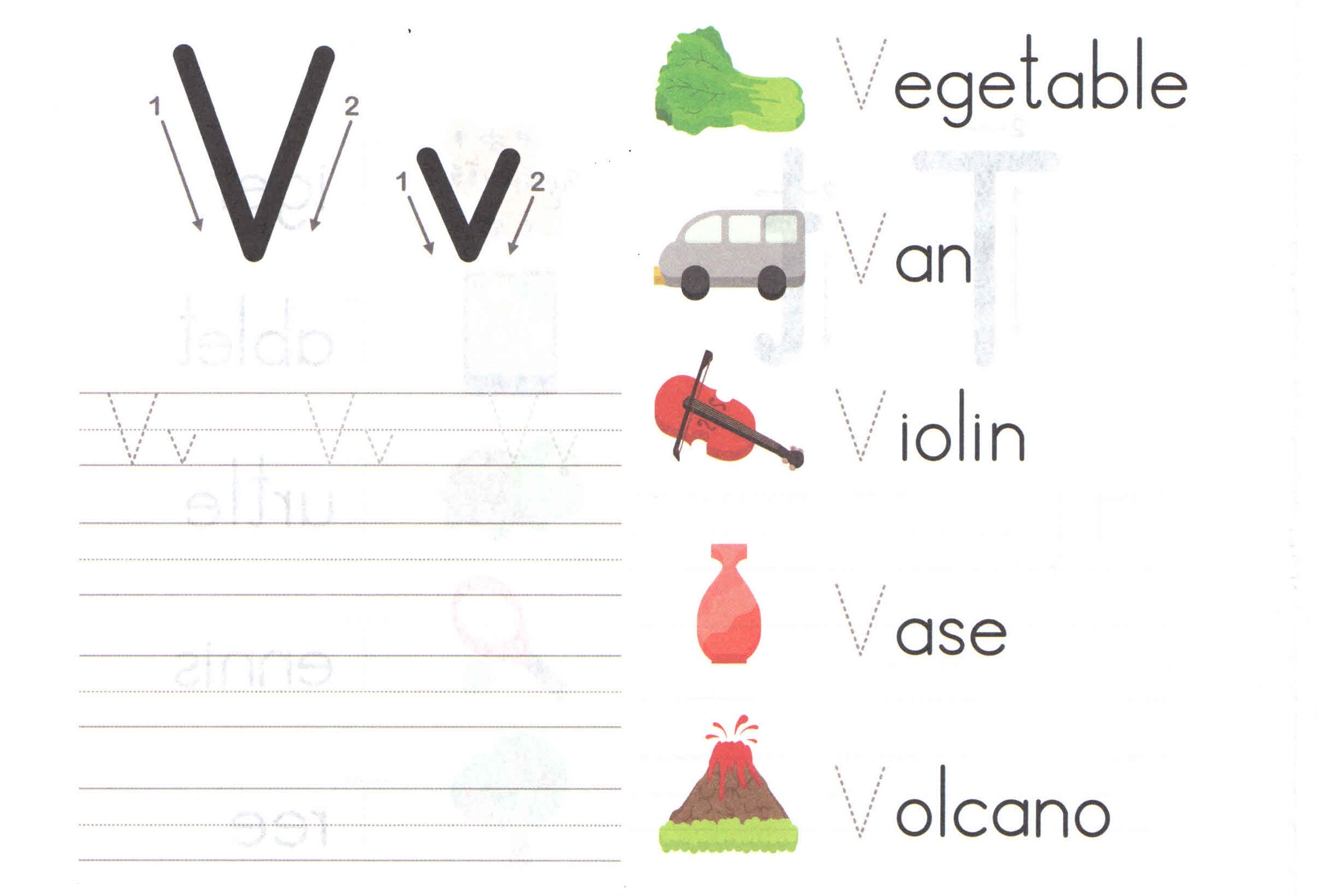Alphabet Capital And Small Letter V V Worksheet For Kids