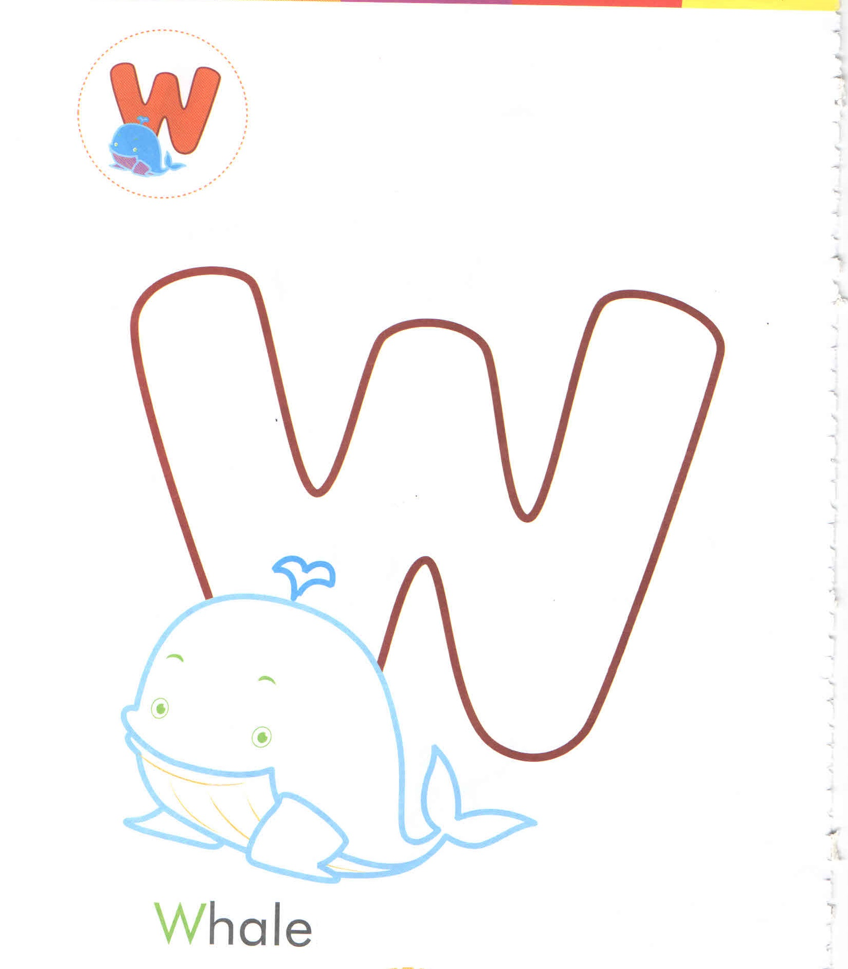 Alphabet Letter W Whale Coloring Page For Preschool
