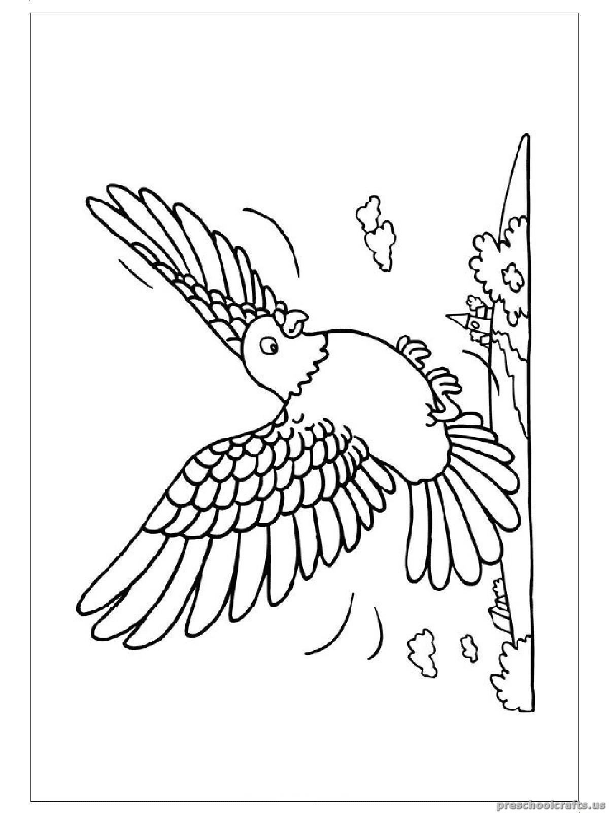 Swallow Coloring Pages For Kindergarten