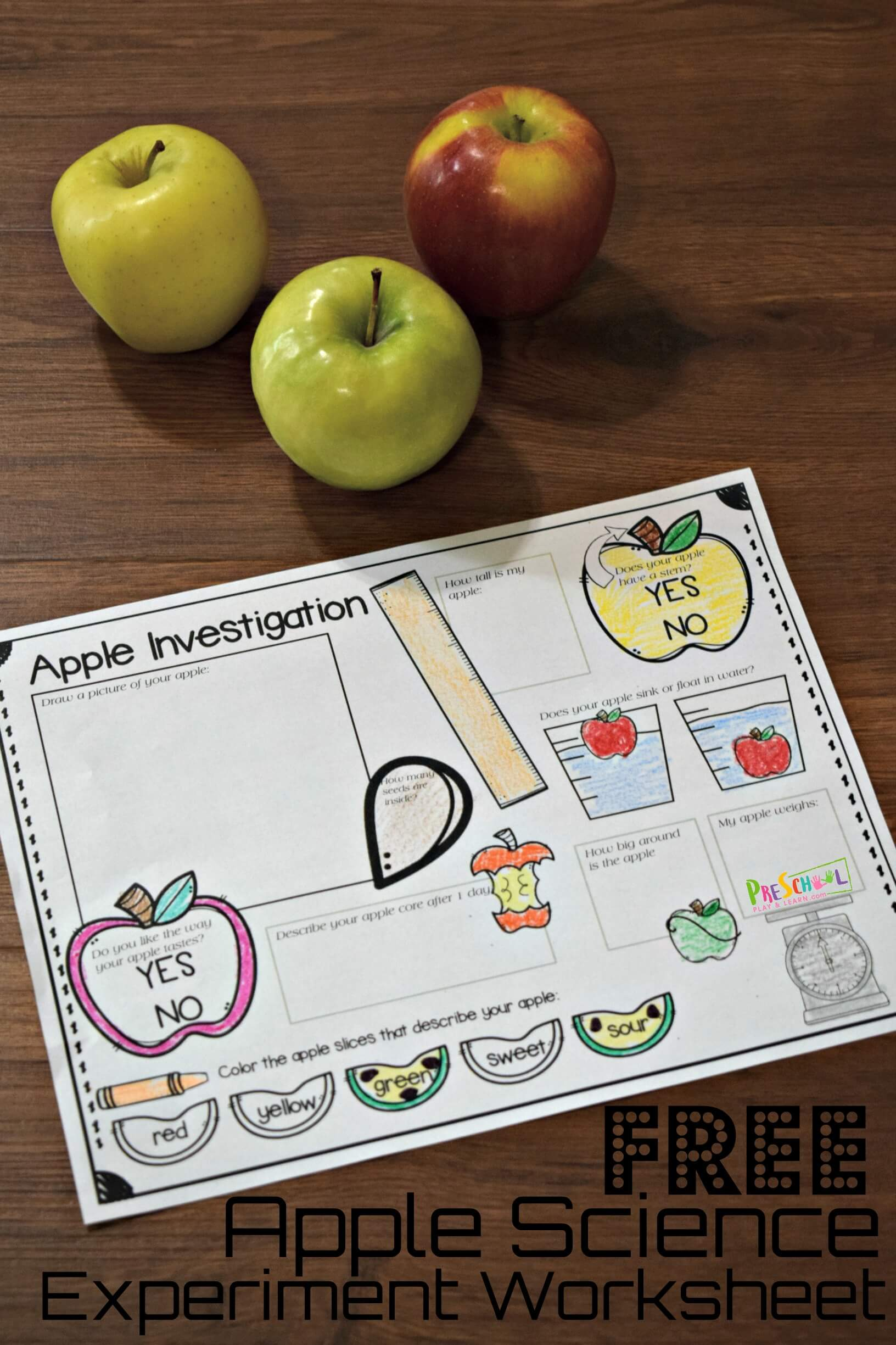 Free Apple Science Experiment Worksheet