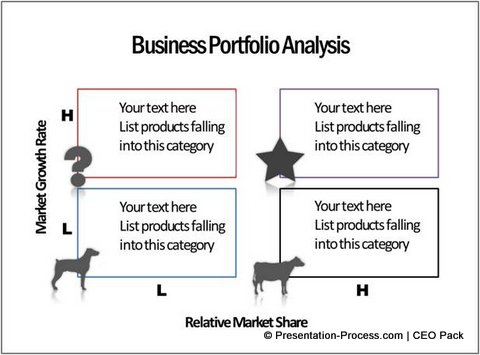 the businees portfolio analysis Business risk analysis risk management in the internet age managing downside vs variable risk executive summary in business, risks lurk at every turn,.