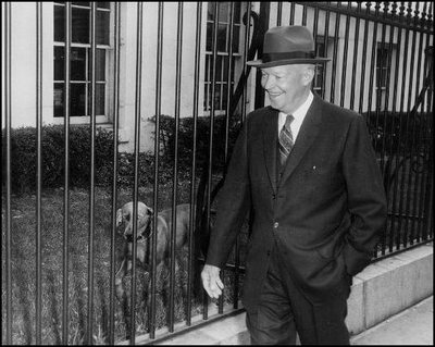 President Eisenhower's Weimaraner, Heidi