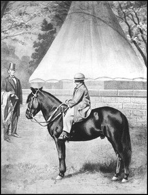Tad Lincoln's Pony