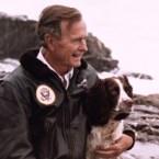Ranger, George H.W. Bush's Dog
