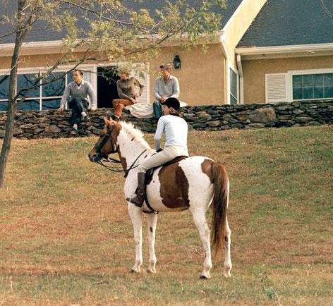 Rufus – JFK's Horse