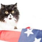 Presidential Pet Trivia – Week of June 7, 2021