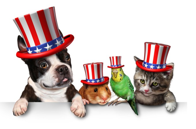 Presidential Pet Trivia – Week of November 04, 2019
