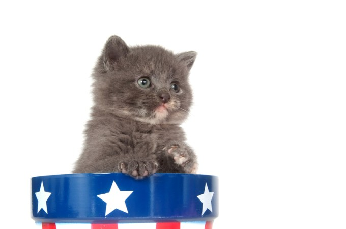 Presidential Pet Trivia – Week of December 2, 2019