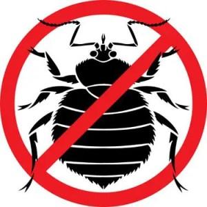 anti bedbug
