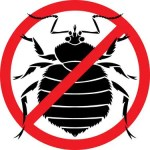 anti bedbug 150x150