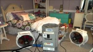 heat treatment Bedbugs Presidio Pest Management