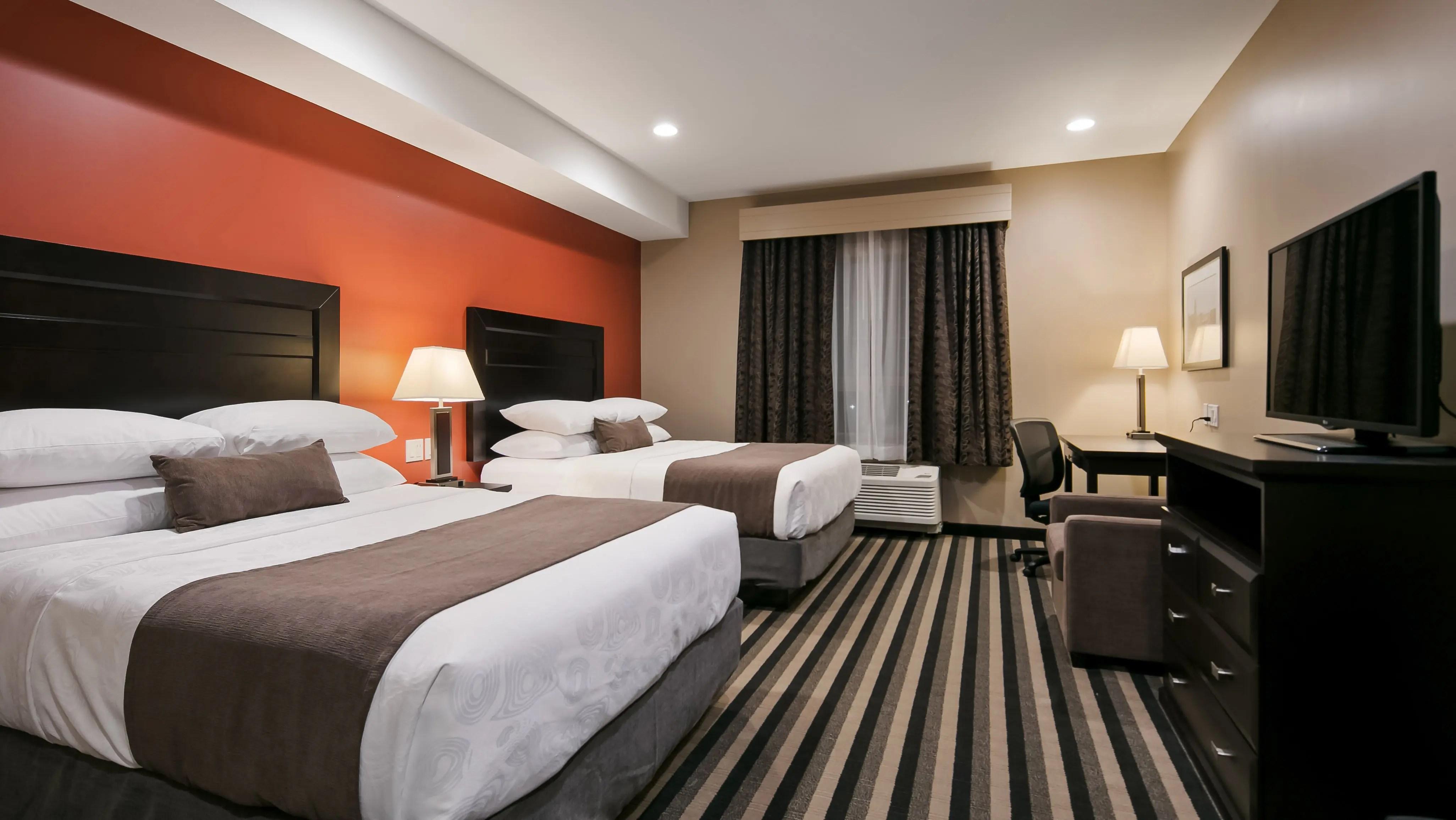 bedbugs hotel