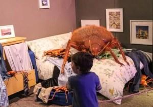 bedbug nightmare