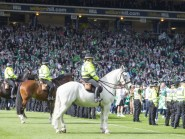 Hibs' cup final win was marred by crowd trouble