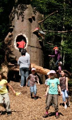 Es ist mal wieder soweit: Die überlebensgroße Spechthöhle auf dem Waldspielgelände sucht dringend wieder Nachmieter – auf dem siebten Spiegelauer Spechtfest