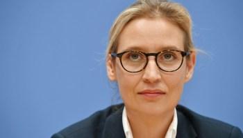 Bundestag, Alice Weidel, Politik,Deutschland,AfD,Wahlen,rechtswidrigen Euro-Rettung