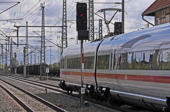 ICE,Deutschen Bahn,Rathenow,Berlin, News,Nachrichten,Wildschweinen,Tiere