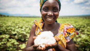 Cotton made in Africa, Wirtschaft, Fashion / Beauty, Mode, Handel, Bild, Umwelt, Nachhaltigkeit, Baumwolle, Hamburg