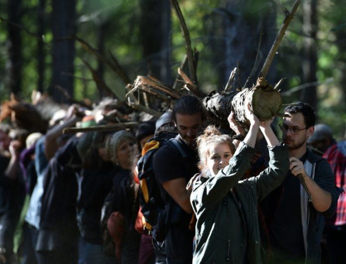 Kohlegegner,Hambacher Forst,Nachrichten,Wald retten - Kohle stoppen,Braunkohletagebau,Umwelt