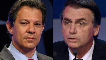 Fernando Haddad,Jair Bolsonaro,Ausland,Außenpolitik,Nachrichten,Wählermanipulation,Wahlen