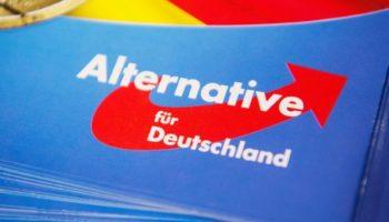 Alternative für Deutschland ,AfD,Politik,Nachrichten,News,Presse,Aktuelles,Spende,Alice Weidel ,Bundestag ,Wahlen,Björn Höcke