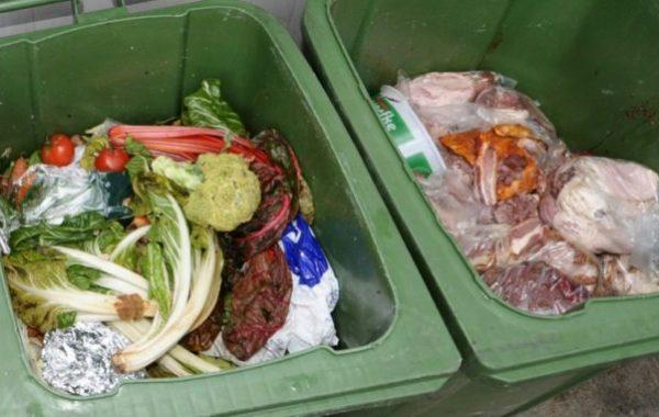 Berlin,Politik,Ministerin Klöckner,Lebensmittelverschwendung,Produktverpackungen,News,Nachrichten