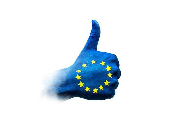 Europawahl 2019,Wahlen,Presse,News