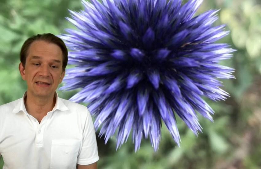 Dr. Bodo Schiffmann,Corona, Presse,News,Medien