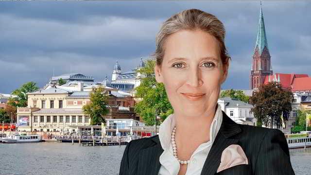 Alice Weidel,AfD,Politik,Presse,News,Medien