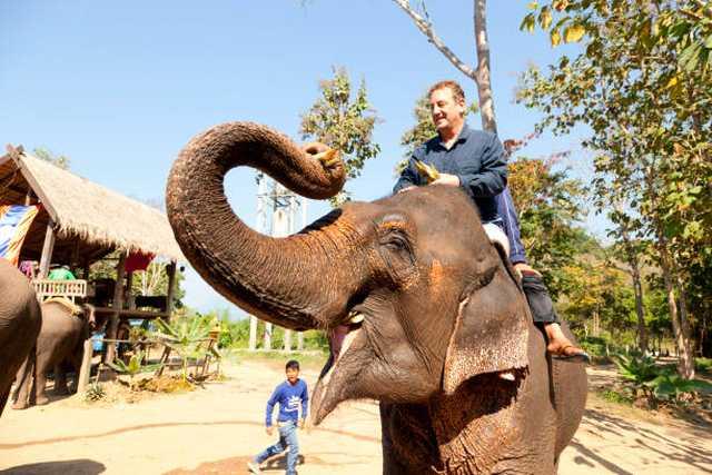 Alkoholisiertes Elefantenreiten in Sri Lanka jetzt verboten