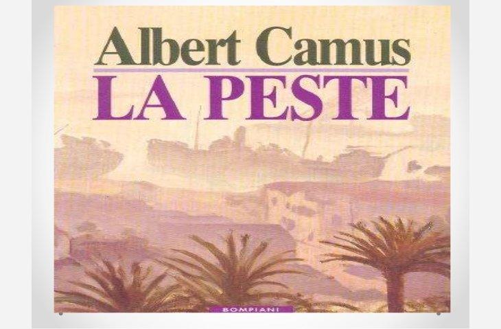 Relire Albert Camus La Peste Medias Citoyens Diois