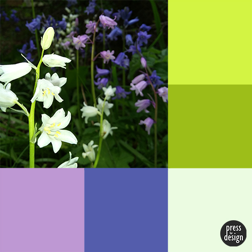 Tuesday Colour Inspiration – Bluebells