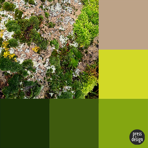 Tuesday Colour Inspiration: Moss Covered Stone