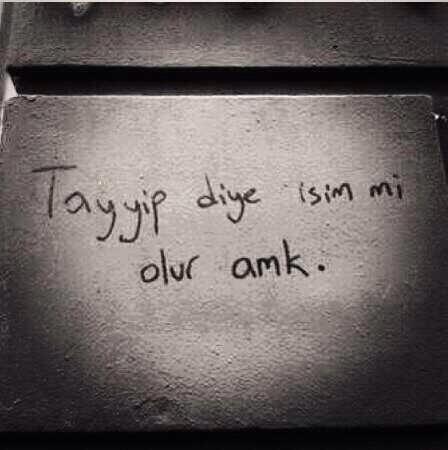 Gezi Parkı Eyleminde duvarlara yazılan yazılar