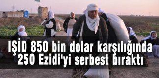 IŞİD 850 bin dolar karşılığında 250 Ezidi'yi serbest bıraktı