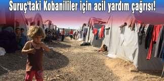 Suruç'taki Kobanililer için acil yardım çağrısı!