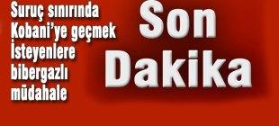 Son Dakika: Kobani sınırında biber gazlı müdahale
