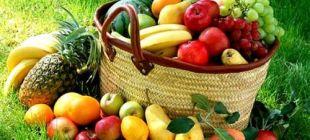 Türkiye'de organik tarımın ilk adımı tüketici ve üreticiyi bilgilendirmektir