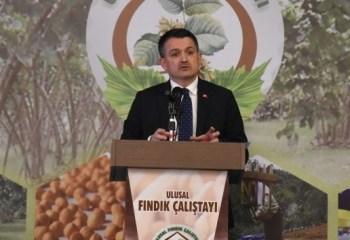 Bakan Pakdemirli: 'Fındığın Türkiye'ye katkısını, 3 milyar dolar olarak belirledik'
