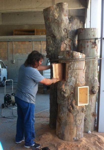 Arrivano le micro-biblioteche nei parchi di Cervia