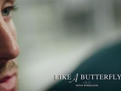 Like-a-Butterfly