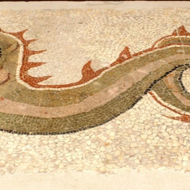 Museo Kaulon - Mosaico raff. drago marino