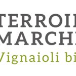 Terroire-Marche-logo-copertina