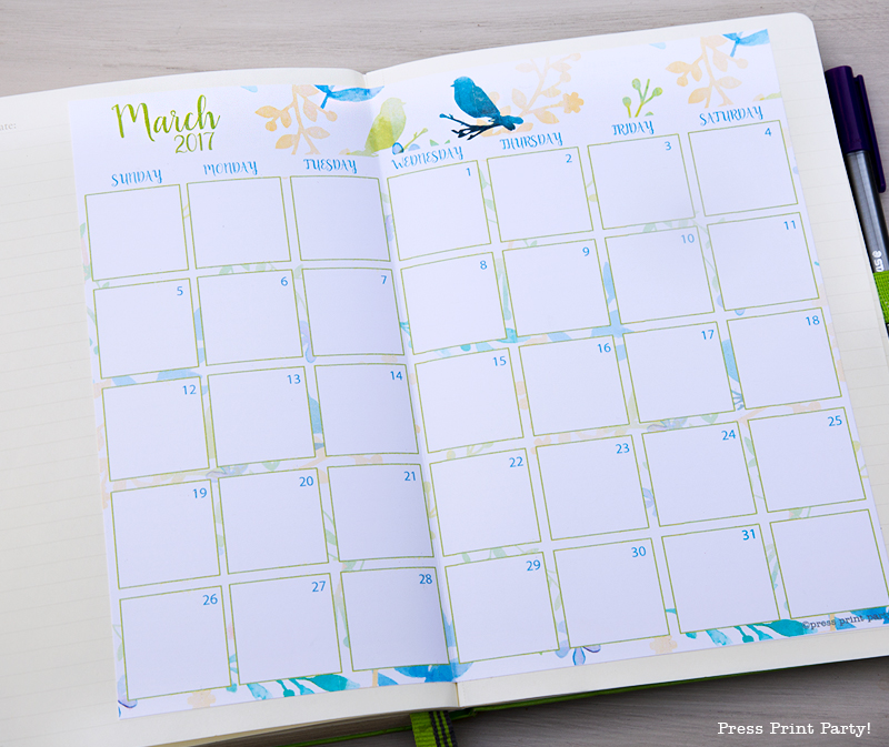 2017 Calendar Printable for Bullet Journals - Watercolor Designs