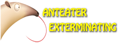 Anteater Exterminating Inc. Provides Free Termite Inspection in Phoenix 2