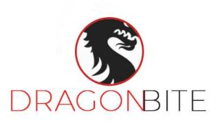 Fastest and Easiest Ways to Improve Blog Ranking – DragonBite SEO 13