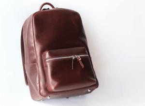 Everlane Alum Created Perfect Minimalist Leather Backpack Under $250 2