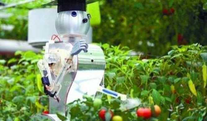 German Liectroux Agricultural Robot Injects New Vitality Into Agricultural Development 1